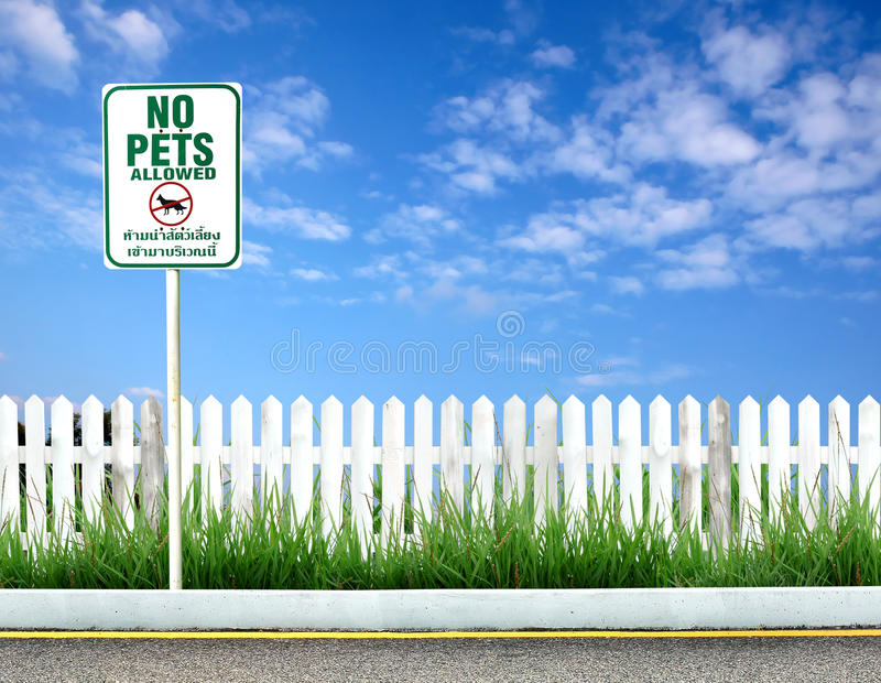 No pets allowed sign. Board royalty free stock images