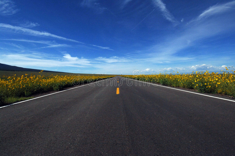 Download No Place To Roam Royalty Free Stock Image - Image: 1098436