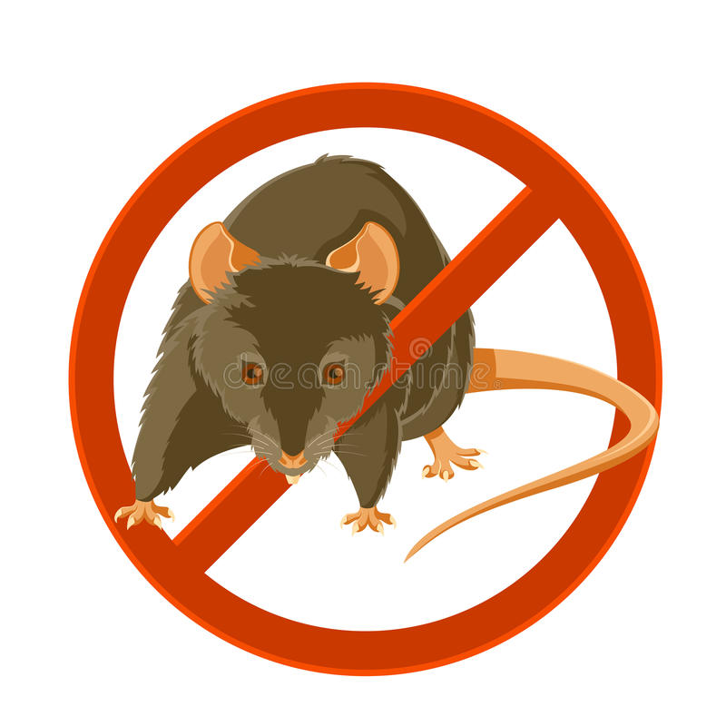 No rat sign. Vector image of a rat in the disable sign stock illustration
