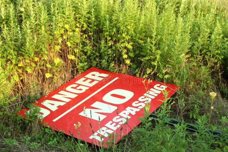 Download No Trespassing stock image. Image of alert, halt, fallen - 6095927