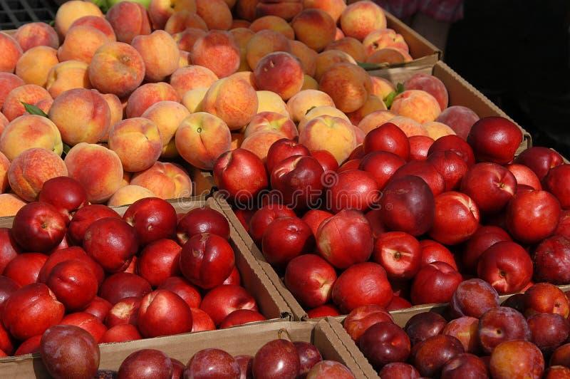 No3 Della Frutta Immagini Stock