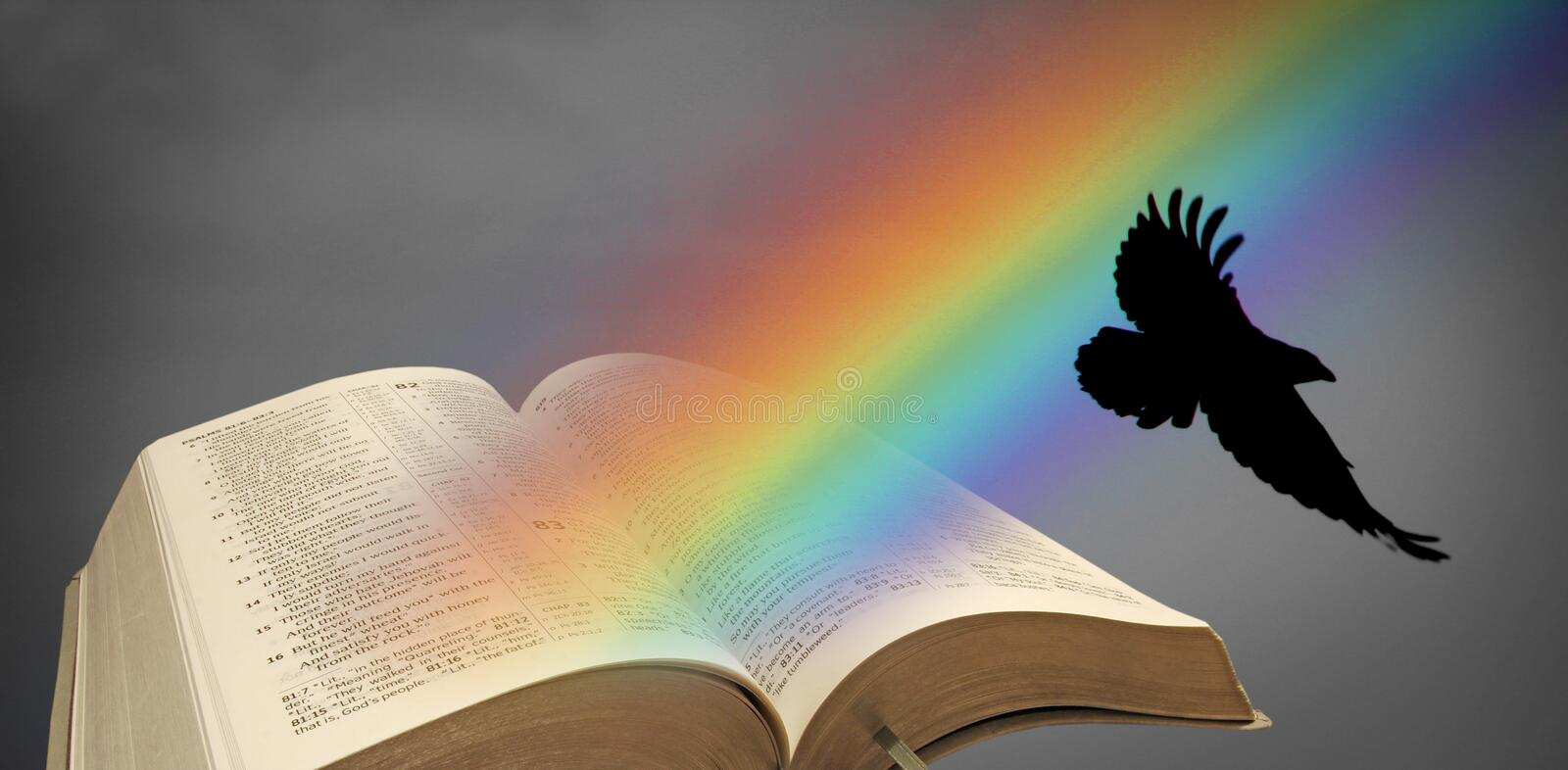 Noah rainbow raven open bible. Photo of open bible with noah`s rainbow and raven flying out of pages stock illustration