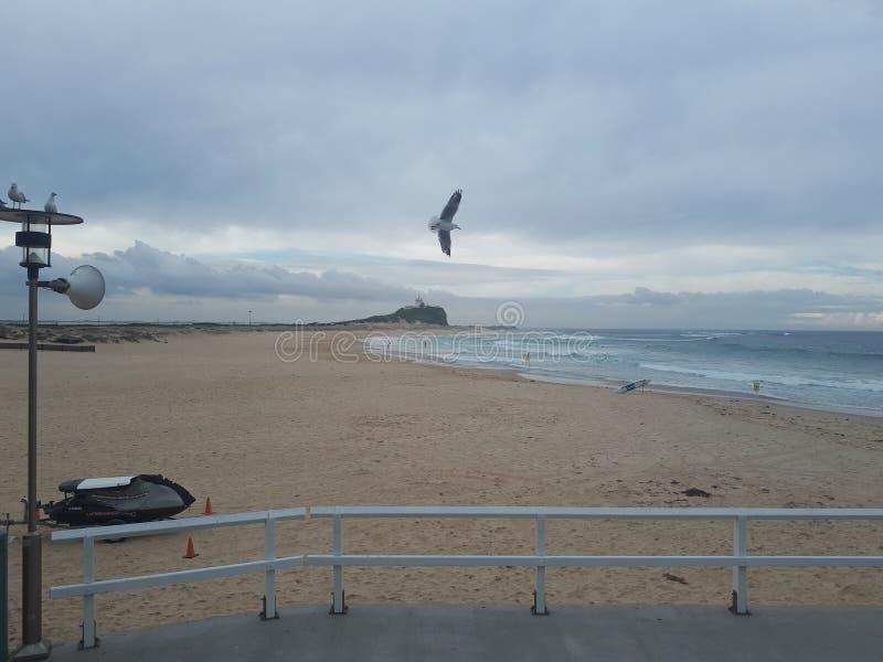 Nobby& x27; s plażowy i przylądkowy Newcastle Australia fotografia stock