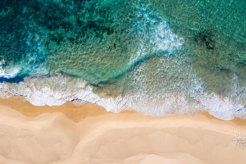 Nobbys-Strand - Newcastle NSW Australien - Vogelperspektive stockfotos