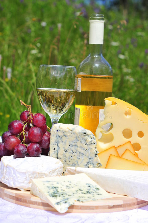 Noble cheese and white wine royalty free stock image