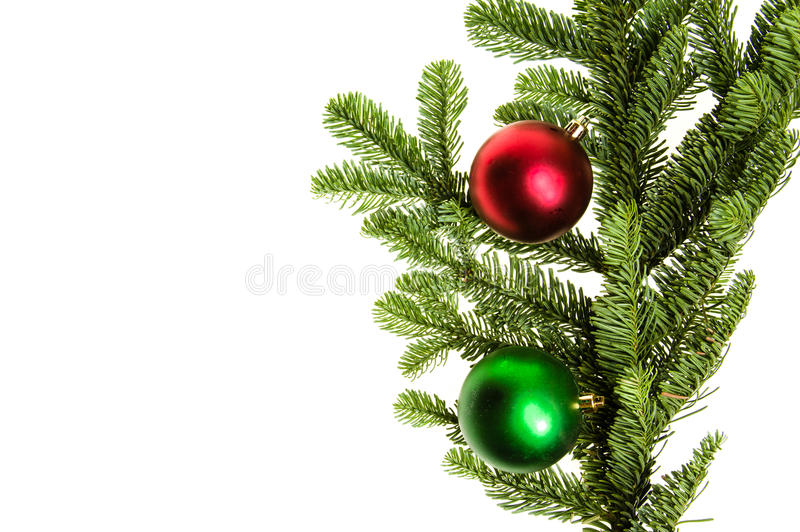 Noble fir bough with red and green ornaments. Isolated royalty free stock images