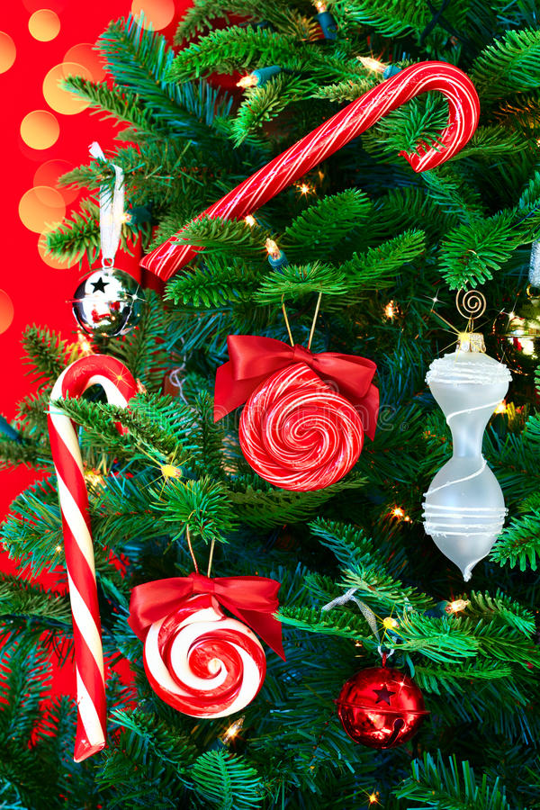 Download Noble Pine Christmas Tree With Candy Canes Stock Images - Image: 21850784