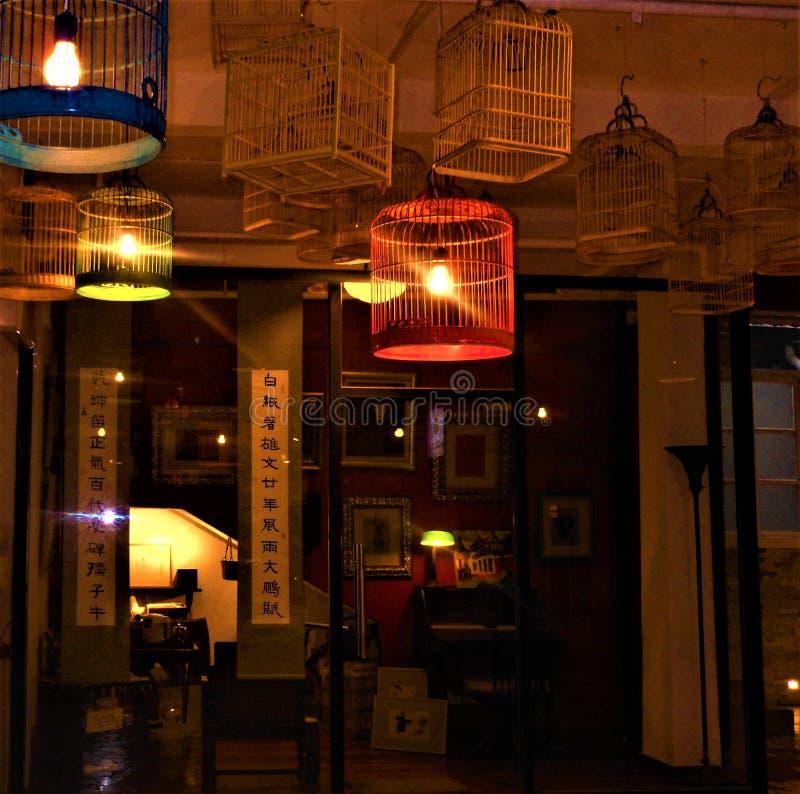 Noc, artystyczna atmosfera i ptasie klatki, zdjęcie royalty free