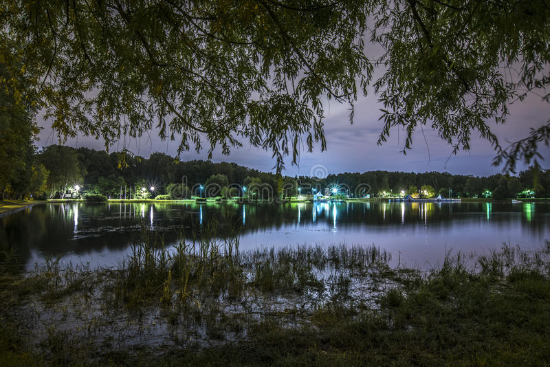 Noc krajobraz w parku z stawem fotografia royalty free