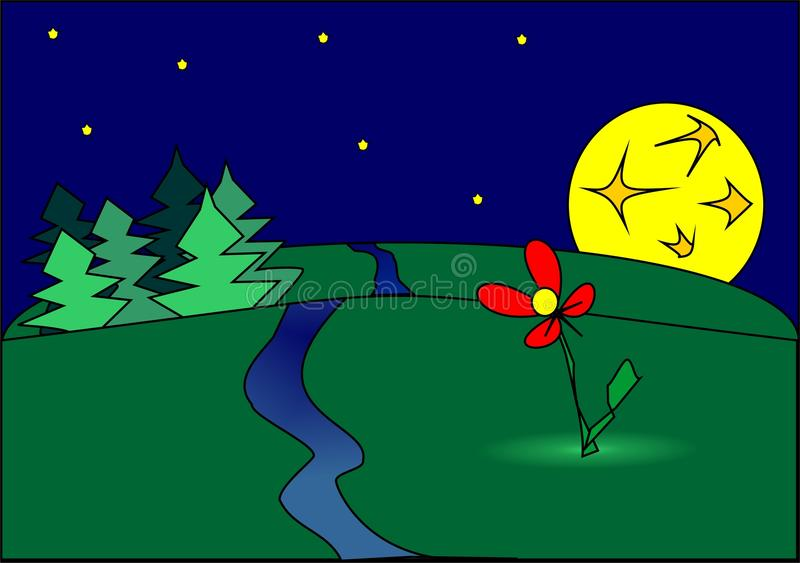 Noc kwiat zdjęcie royalty free