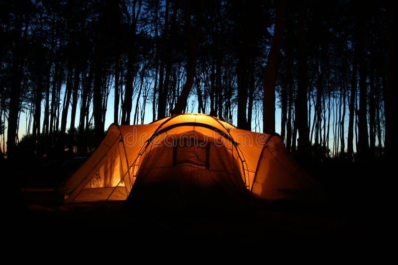 noc lasowy namiot zdjęcie stock