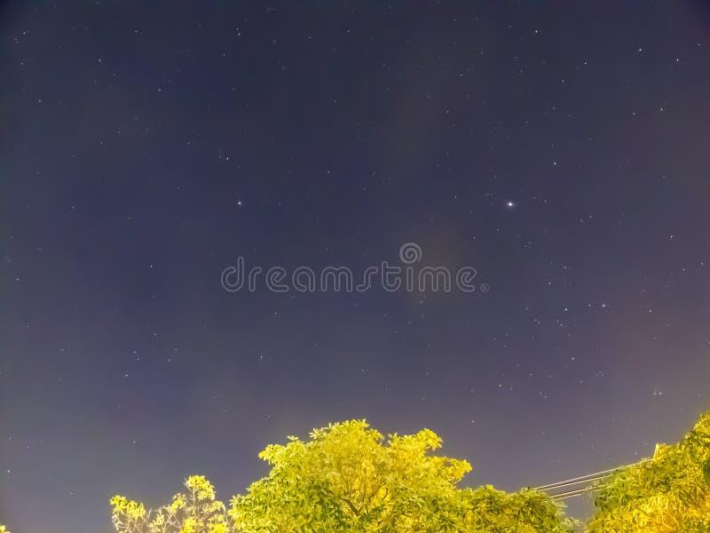 Noc niebo z drzewem fotografia stock