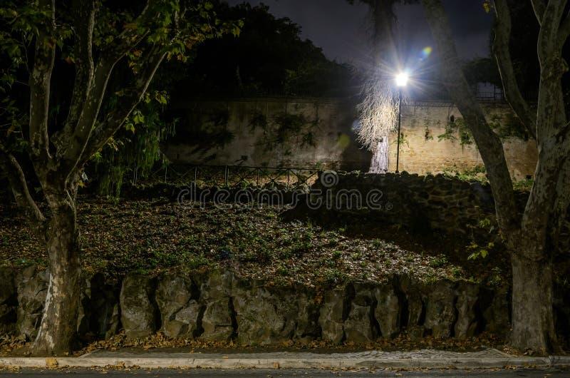Noc park z krokami i płonącym lampionem fotografia royalty free
