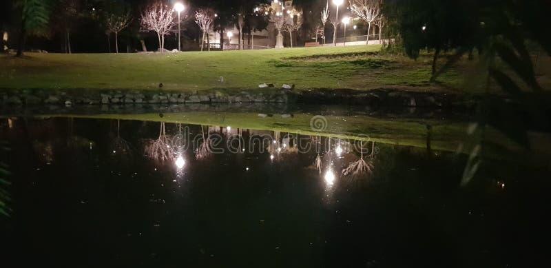 Noc spacery zdjęcie stock
