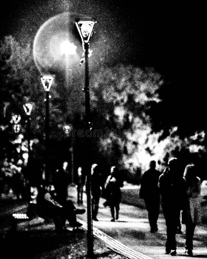 Noc w ciszy zdjęcia royalty free