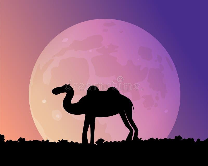 Noc wielbłąd w pustyni ilustracja wektor