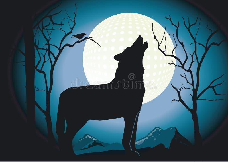 noc wilk ilustracja wektor