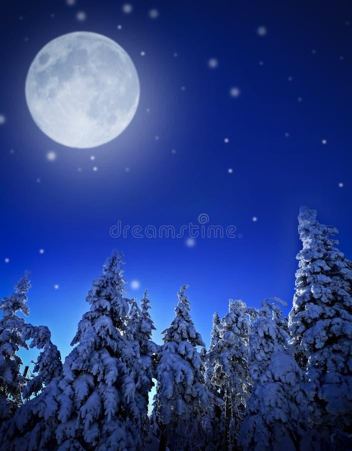 noc zima obraz royalty free