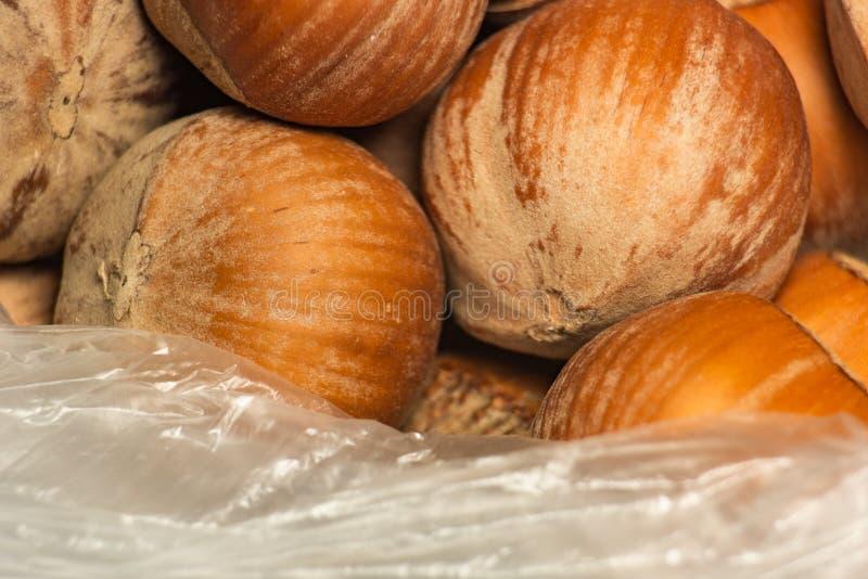 Nocciole marroni in un sacchetto trasparente di plastica immagini stock libere da diritti