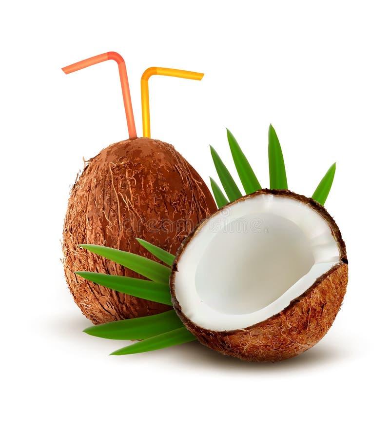 Noce di cocco con un cocktail del latte di cocco royalty illustrazione gratis