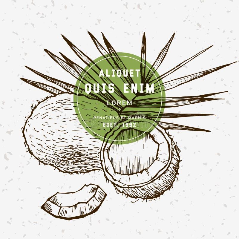 Noce di cocco disegnata a mano royalty illustrazione gratis