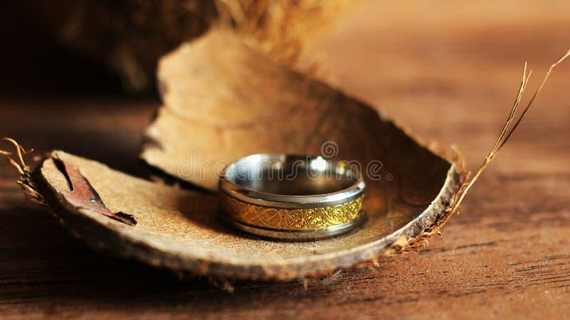 Noce di cocco e fede nuziale, cerimonia esotica, creazione della famiglia fotografia stock libera da diritti
