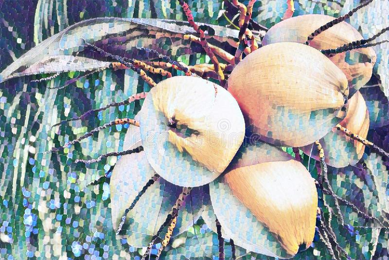 Noce di cocco gialla sull'illustrazione digitale della palma Modello dipinto dell'insegna sbiadito mazzo del dado dei Cochi Piant royalty illustrazione gratis