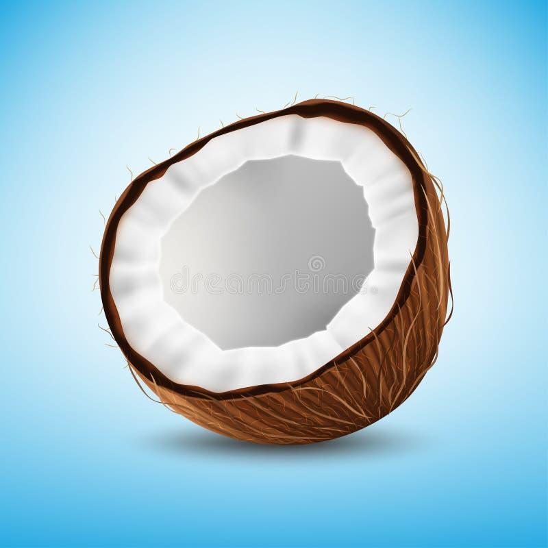 Noce di cocco isolata illustrazione di stock