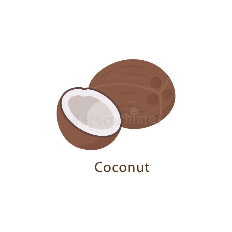 Noce di cocco isolata sull'illustrazione bianca di vettore del fondo nella progettazione piana illustrazione di stock