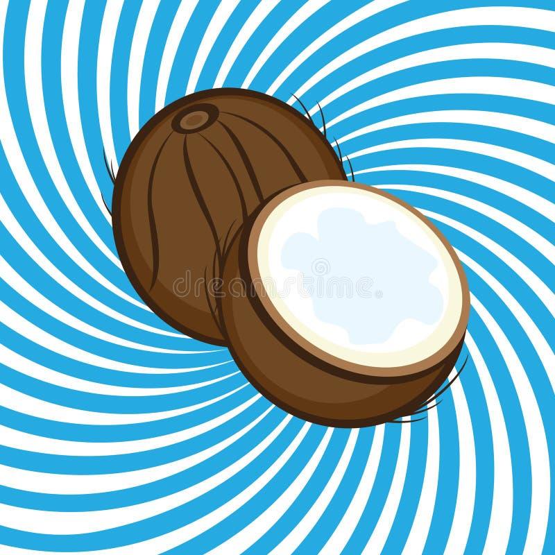 Noce di cocco matura illustrazione di stock