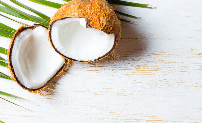 Noce di cocco in permesso della palma, fondo bianco Vista superiore fotografie stock libere da diritti
