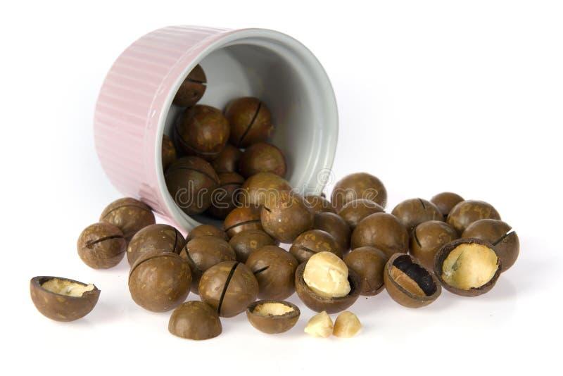 Noce di macadamia fotografie stock