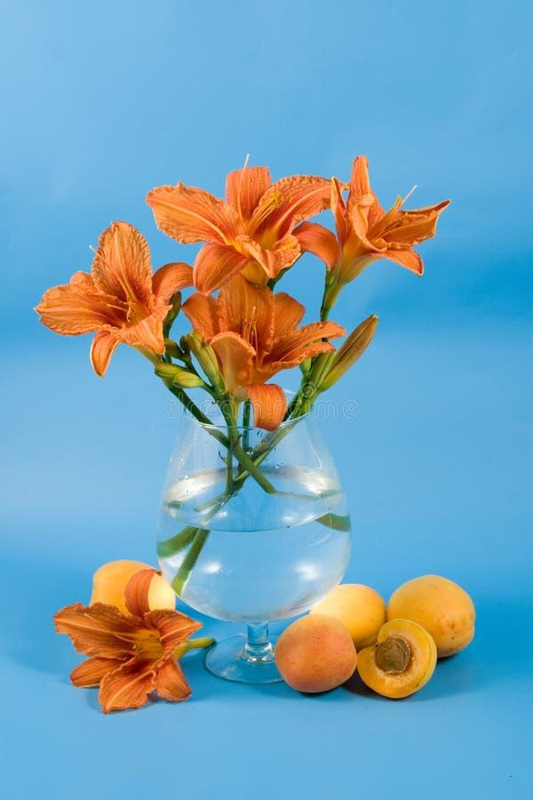 Noch Leben mit Taglilie und Früchten stockbild