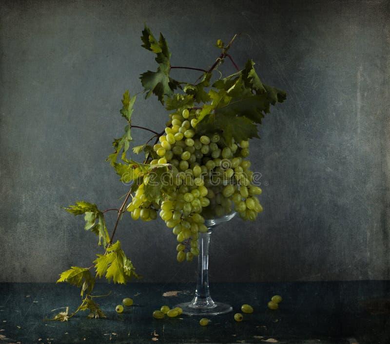 Noch Leben mit weißen Trauben lizenzfreies stockfoto