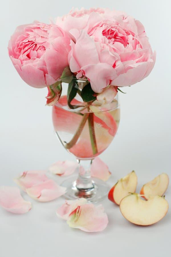 Noch lebens- Blumenstrauß von rosa Pfingstrosen lizenzfreie stockfotografie