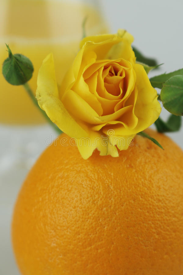 Noch lebens- saftige Orange stockfoto