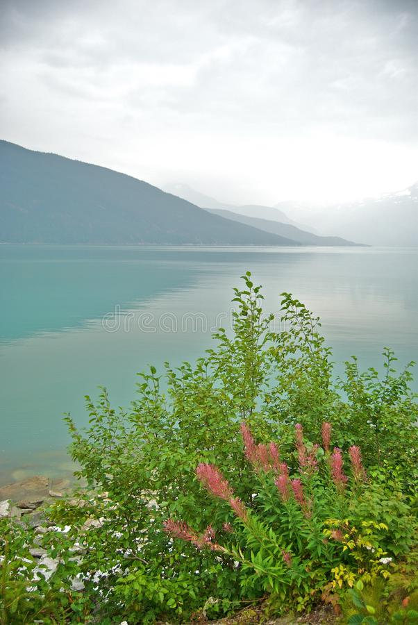 Noch und ruhiger Fjord lizenzfreies stockbild