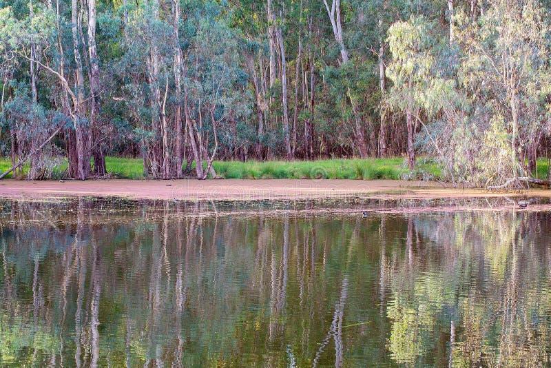 Noch Wasser-Fluss-Reflexionen stockbild