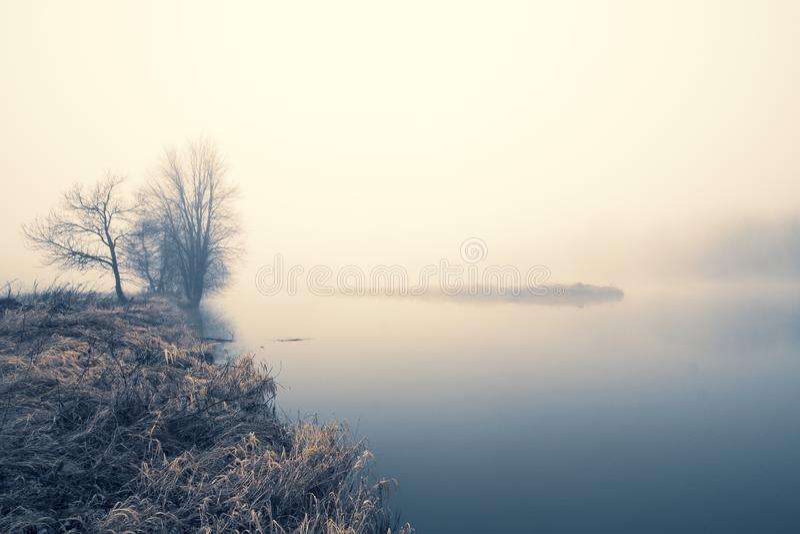 Noch Wasser und Ufer mit blattlosen Bäumen und dunklem Horizont des Nebels; kühle Töne; Kopienraum stockfotos