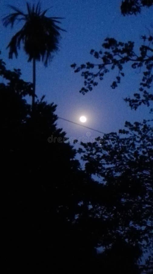 noche imagen de archivo libre de regalías