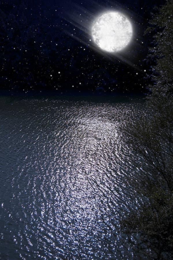 Noche foto de archivo libre de regalías
