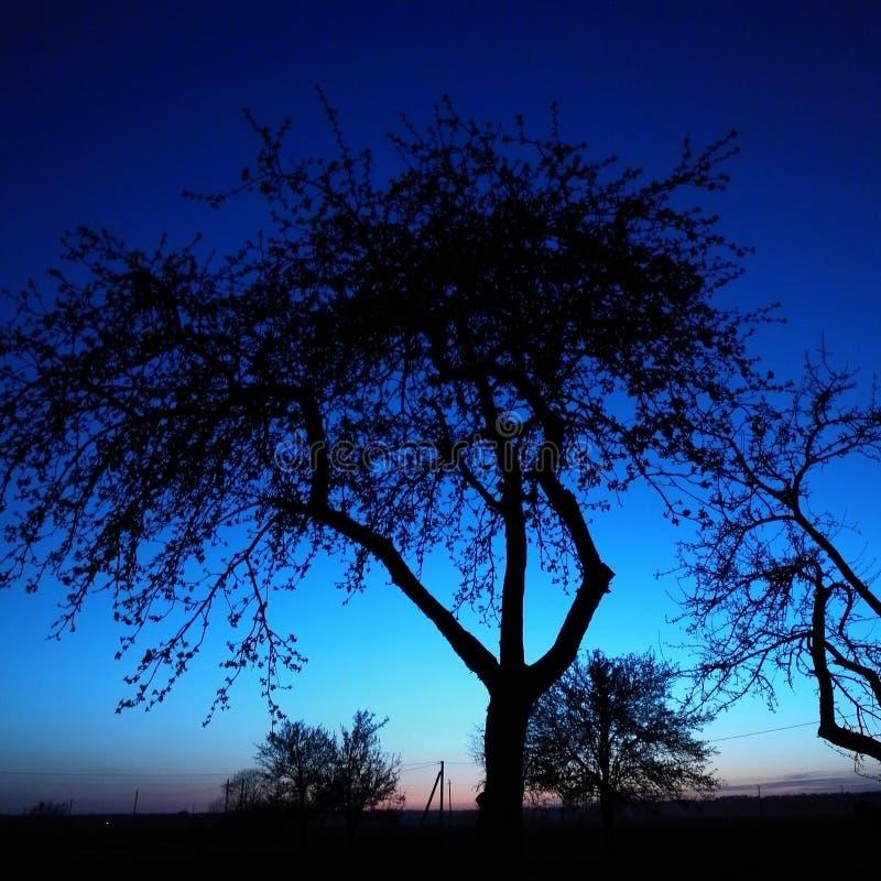 Noche antes de la mañana fotografía de archivo libre de regalías