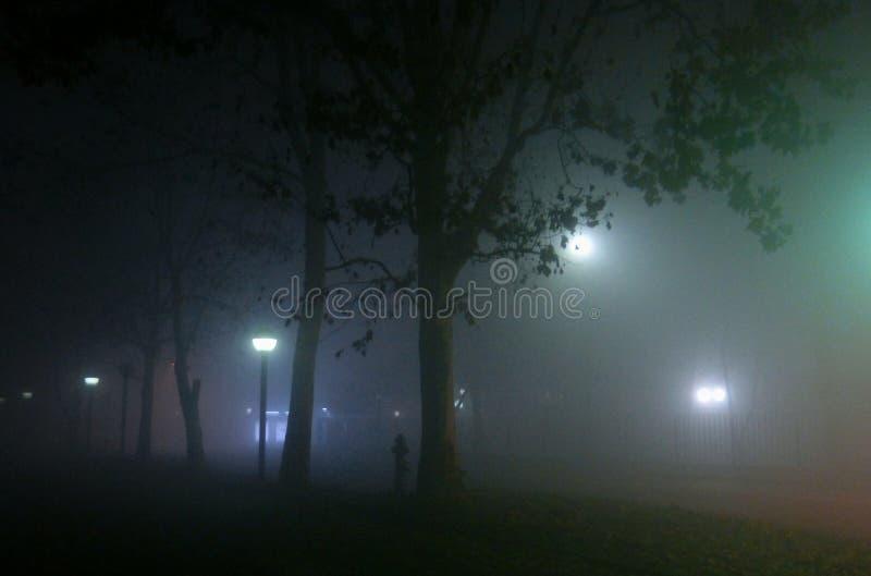 Noche brumosa imagen de archivo