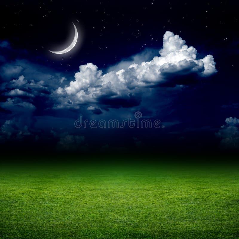 Noche, campo verde stock de ilustración