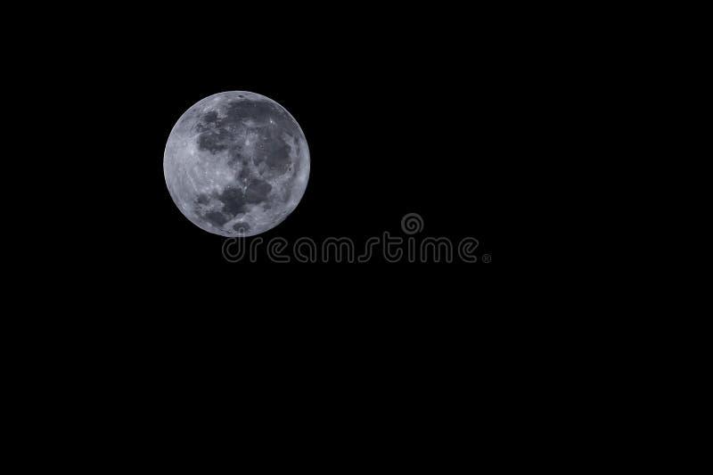 Noche de la luna foto de archivo libre de regalías