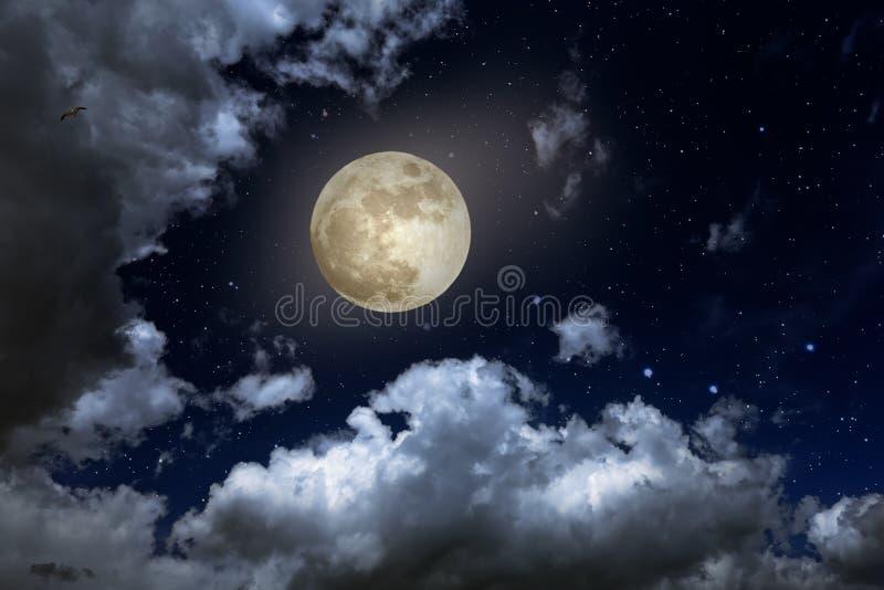 Noche de la Luna Llena stock de ilustración