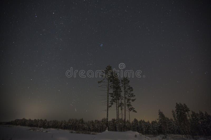 Noche de la luz de las estrellas imagen de archivo libre de regalías
