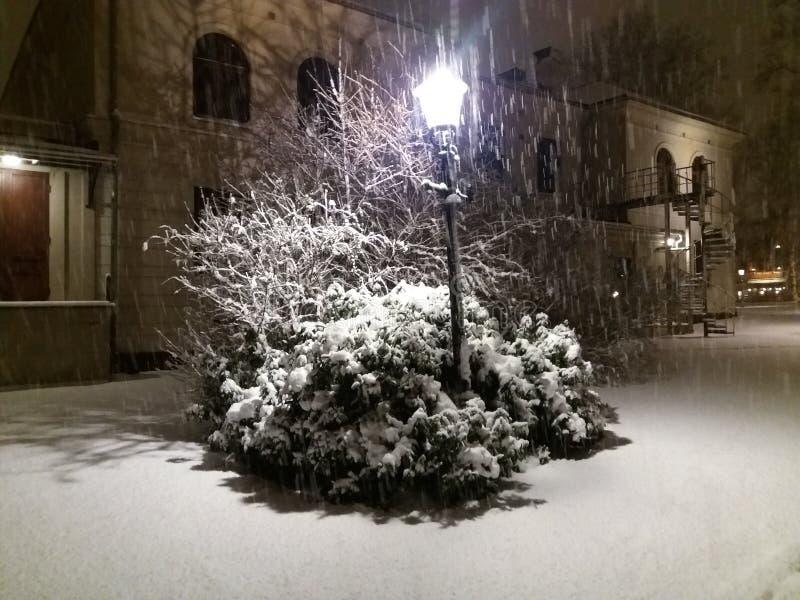 Noche de la nieve imagen de archivo libre de regalías