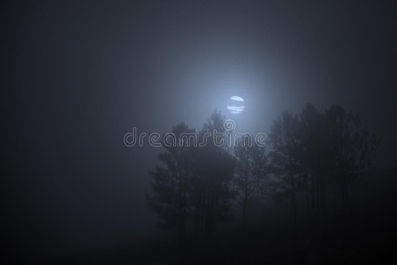Noche de niebla de la Luna Llena fotos de archivo libres de regalías