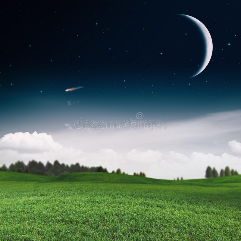 Noche de verano brumosa en el prado verde foto de archivo